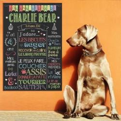 Affiche à personnaliser pour fête pour chiens