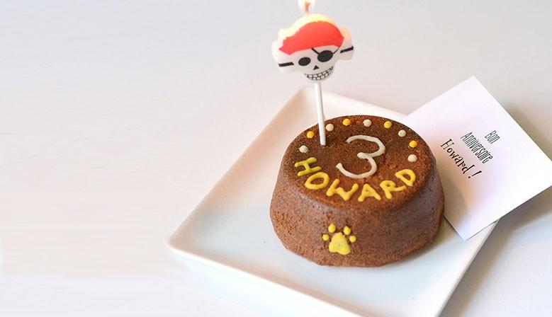 Gâteau d'anniversaire pour chiens | Gâteaux pour chien