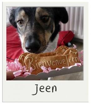 Jeen - Biscuits pour chiens personnalisés Cacahuète