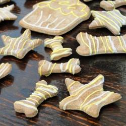Echantillion de Biscuits BIO