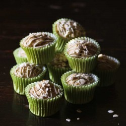 Mini Cupcakes for dogs Apple Crumble
