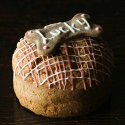 Gâteau personnalisable pour chiens