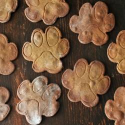Récompenses chiens sans grains Patte de Chien