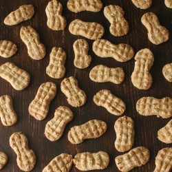 Organic Peanut Dog cookies