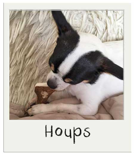 Houps