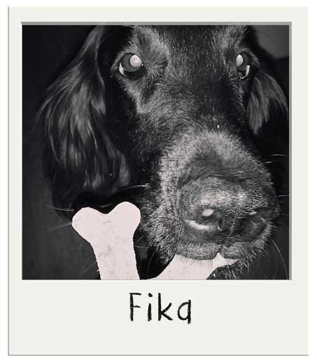 Fika avec son biscuit personnalisé