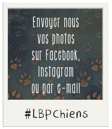 Envoyer nous vos photos !!