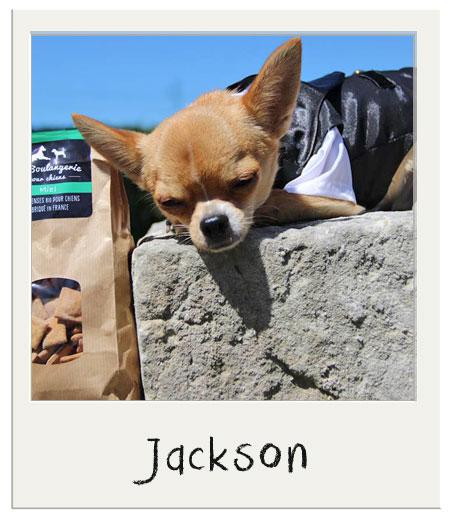 Bon appétit Jackson !