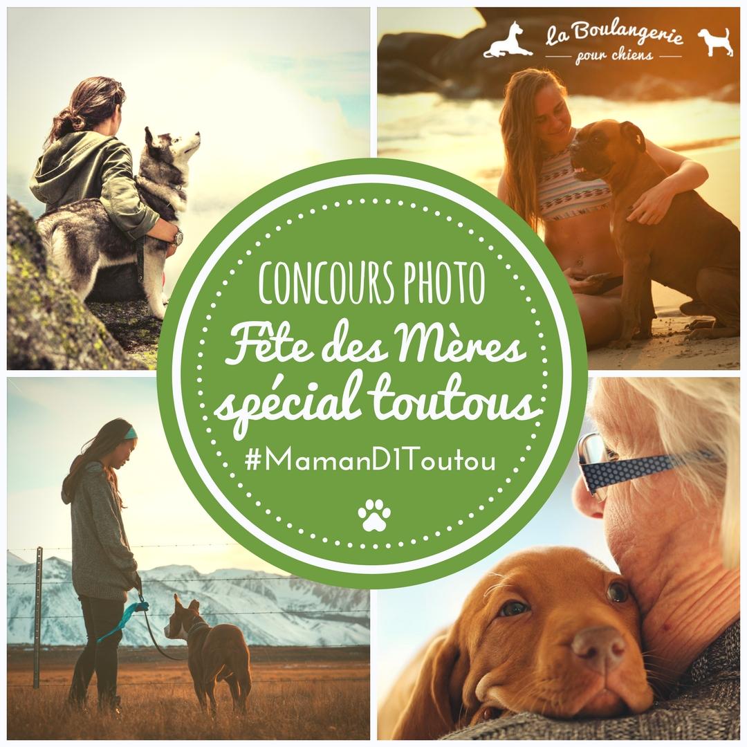 Concours photo Fête des Mères spécial toutous