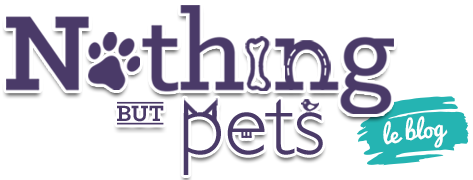 Nothing But Pets | Le blog