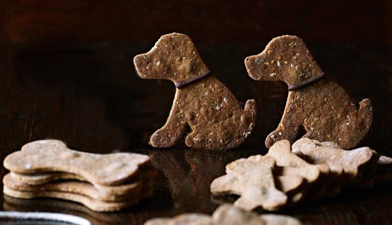 Biscuits pour chiens BIO fait-maison