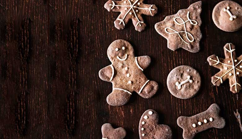 Cadeaux de noel pour chiens | Biscuits BIO Pain d'èpices pour chiots et chiens