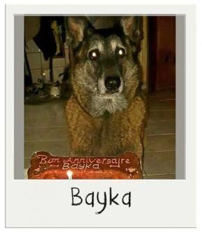 Bon anniversaire Bayka