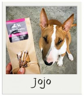 Jojo - Friandises Sans Grains pour chiens Patates Douces