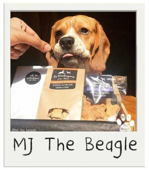 Friandises pour chiens BIO Saveur Boeuf Bourguignon