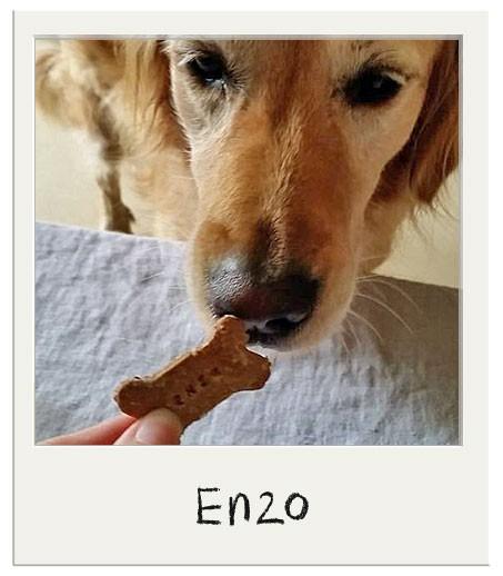 Biscuits personnalisés pour chiens Crumble aux Pommes BIO