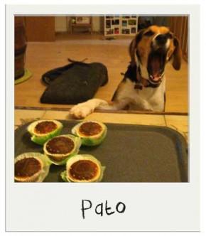 Cup Cakes Personnalisés pour chiens BIO