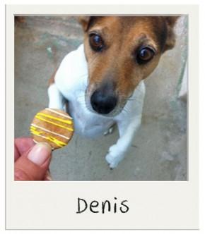 Coffret Biscuits Festifs BIO au miel pour chiens