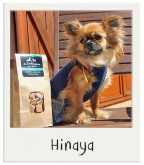 Friandises pour chiens Miel BIO