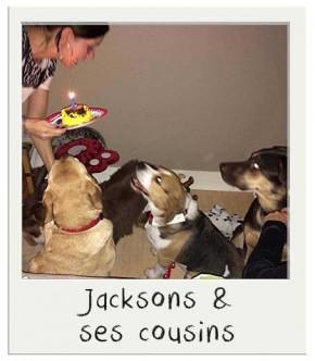 Jacksons et ses cousins