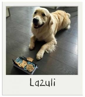 Lazuli - Coffret gourmand Anniversaire pour chiens