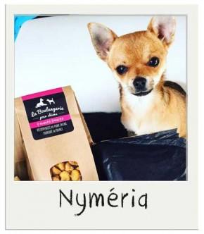 Nyméria - Mini friandises pour chiens Patate Douce