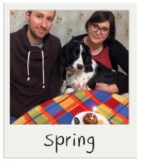 Spring - Gâteau d'anniversaire pour chiens BIO