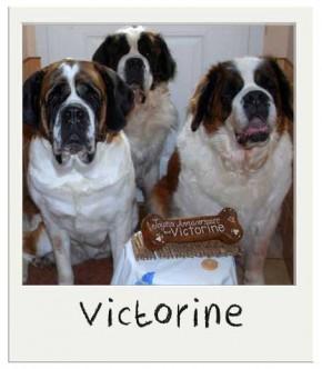 Victorine et ses amis